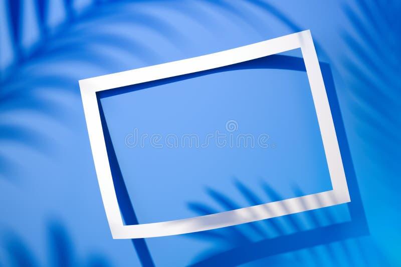 与空白的空的空间和热带植物的空的贴纸框架 3d?? 库存照片