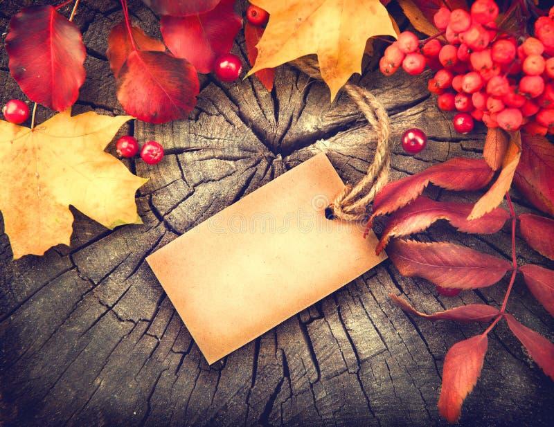 与空白的贺卡和五颜六色的叶子的秋天背景 库存照片