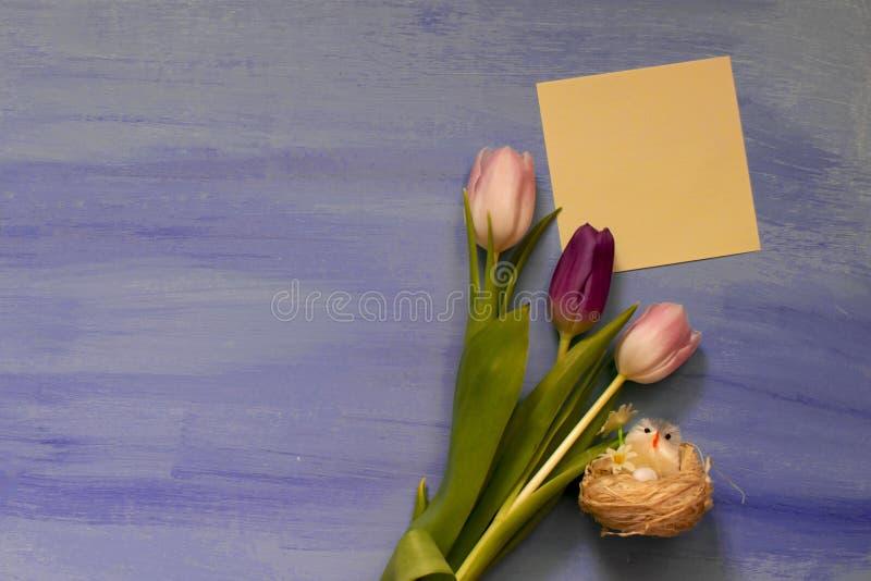 与空间的桃红色和紫罗兰色郁金香在蓝色背景的题字的 复活节 库存图片