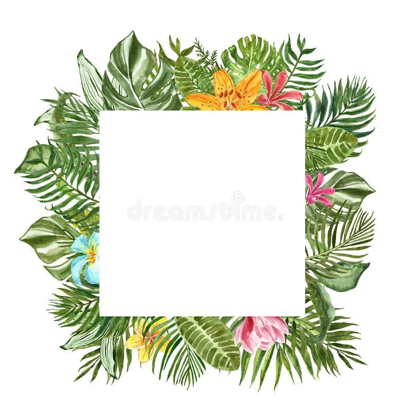 与空间的水彩热带叶子方形的横幅文本的,被隔绝 绿色异乎寻常的植物边界 棕榈叶,monstera 库存图片