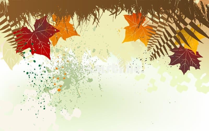 与空间的秋天背景文本的图片