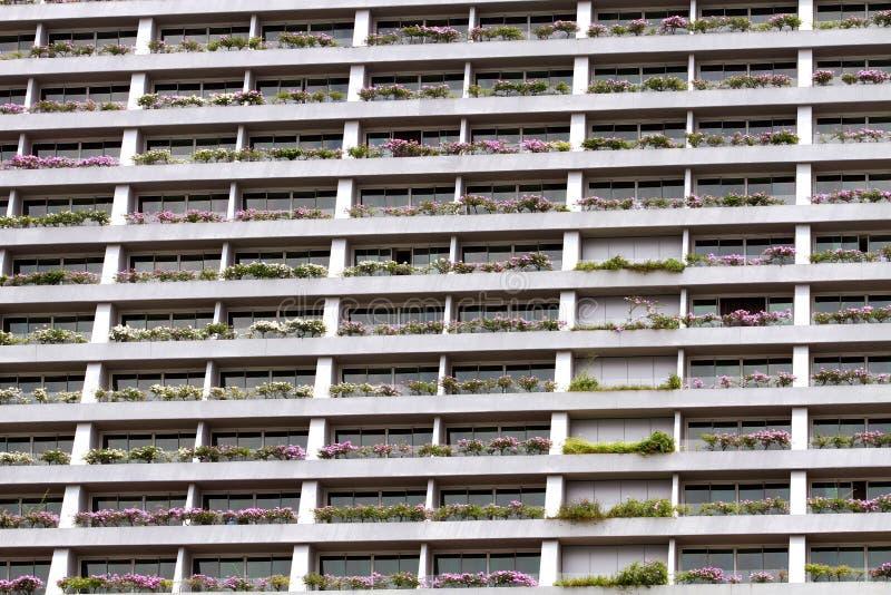 与窗口和花的门面大厦 图库摄影