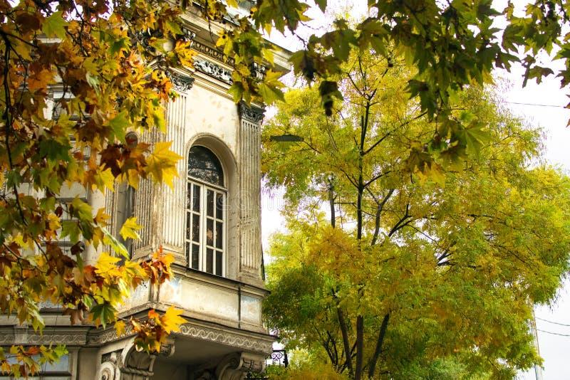 与窗口的美丽的老大厦在街道的角落在第比利斯老镇,秋天叶子颜色,乔治亚 免版税库存照片