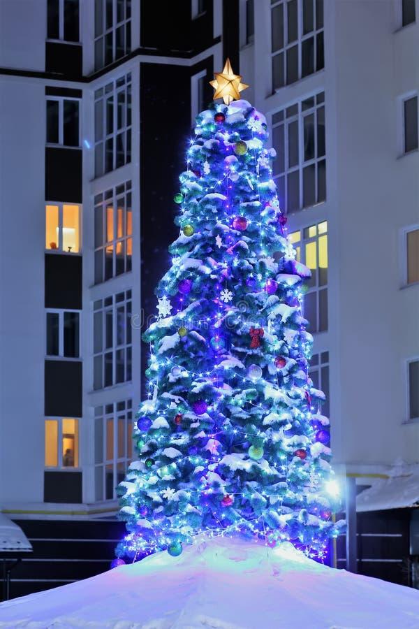 与站立在多雪的围场的光、弓和中看不中用的物品的公共自然发光的室外圣诞树在多层的房子附近 免版税库存照片