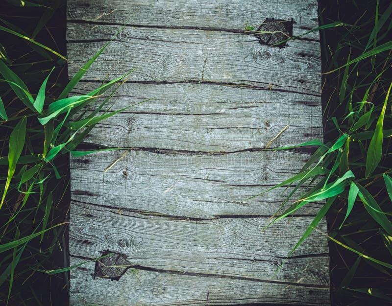 与竹子的木背景 免版税库存照片