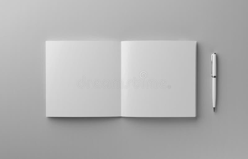 与笔大模型的空白的照片拟真的小册子在浅灰色的背景, 3d例证 皇族释放例证