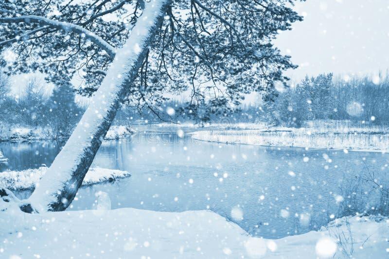 与第一雪的风景 免版税库存照片