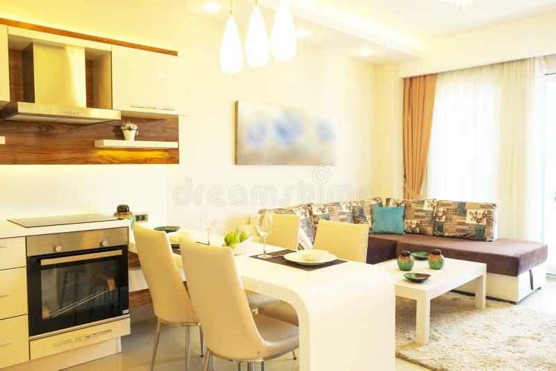 与简单的minimalistic现代室内设计的美丽的太阳边公寓,开放学制厨房客厅在阳光下 免版税图库摄影