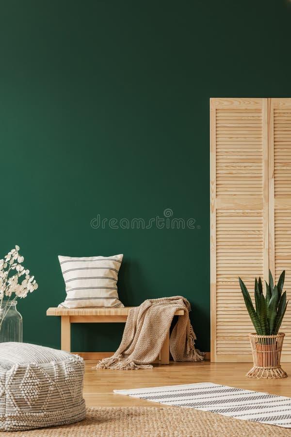 与米黄地毯和镶边枕头的长木凳在木屏幕和植物旁边罐的,拷贝空间在空的绿色墙壁上 图库摄影