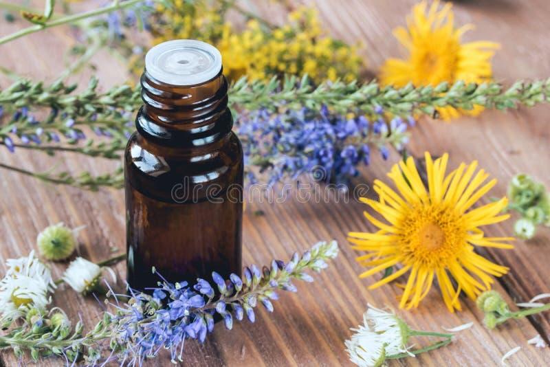 与精油的芳香疗法从柑橘草本和花 库存照片