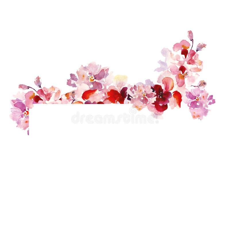 与精美佐仓桃红色花的水彩花卉框架边界在破旧的别致的葡萄酒样式,在与空间的白色背景为 库存例证