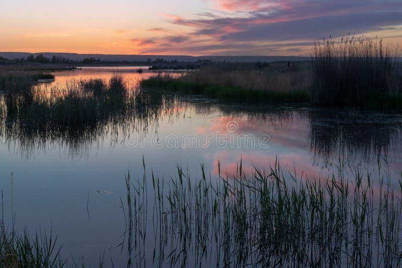 与紫色云彩的美好的日落在湖 免版税库存图片