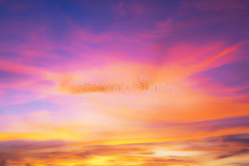 与紫色天空的背景和在日落的黑暗的桃红色 免版税库存图片