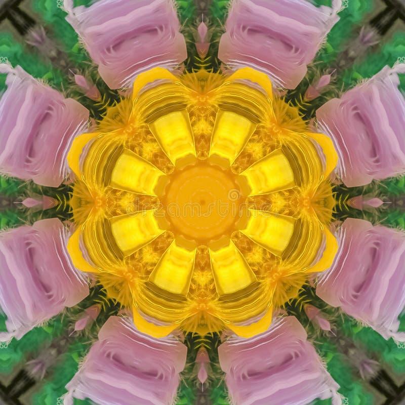 与紫色瓣黄色中心的方形的框架数字花 皇族释放例证