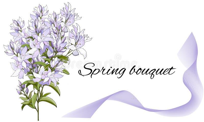 与紫色花的卡片 招呼的文本的典雅的模板 手拉的春天水彩花,传染媒介例证 向量例证