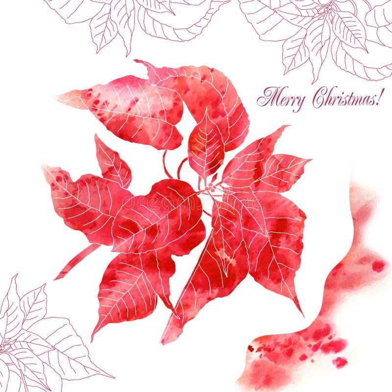 与红色一品红花的背景 皇族释放例证