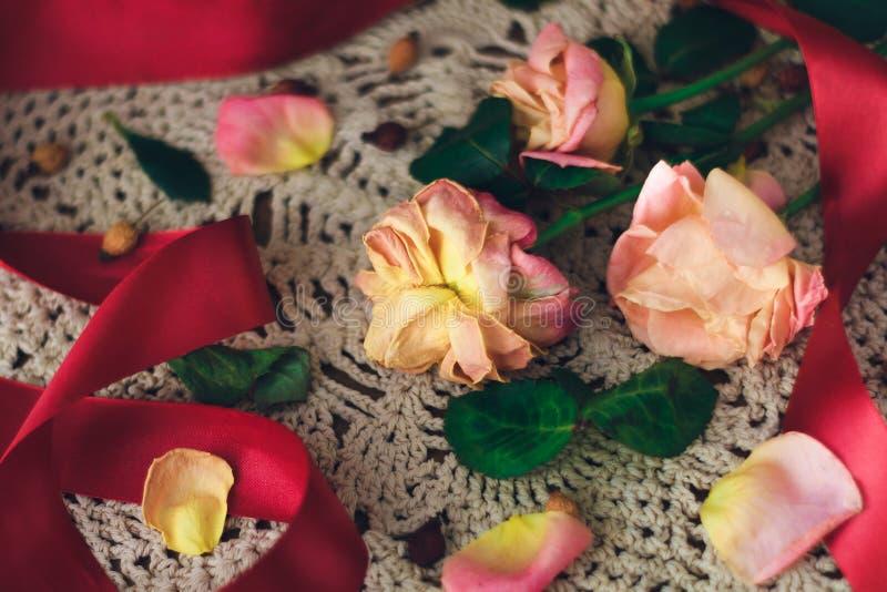 与红色丝带的软绵绵的玫瑰在葡萄酒样式的一块白色鞋带小垫布 免版税库存照片