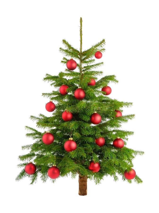 与红色中看不中用的物品的豪华的圣诞树 库存照片