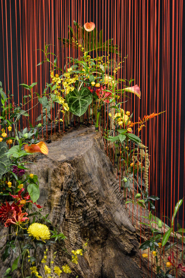与红色串的树干 免版税库存图片