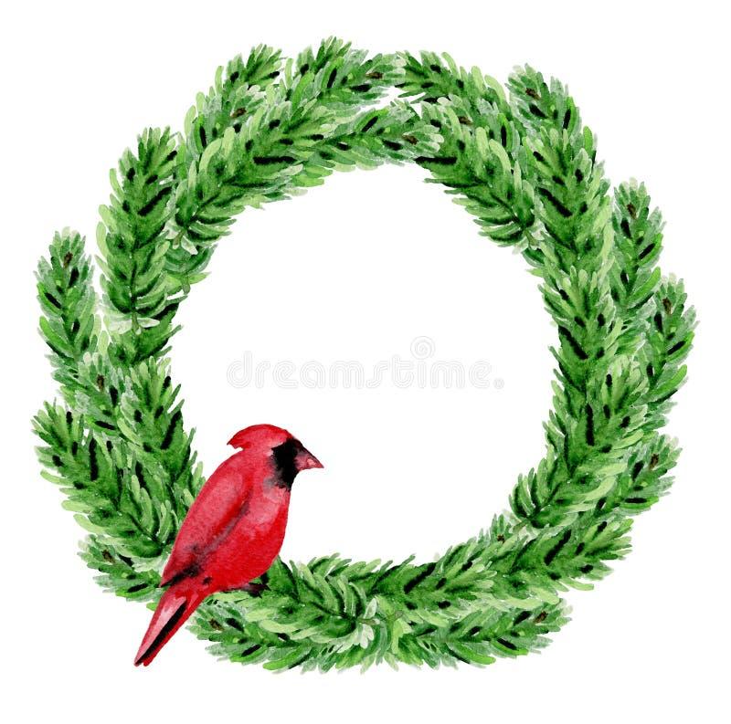与红色主教的绿色水彩圣诞节花圈 皇族释放例证