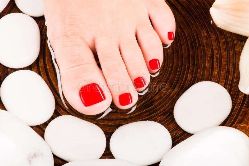 与红色修脚的美好的女性脚 免版税库存图片