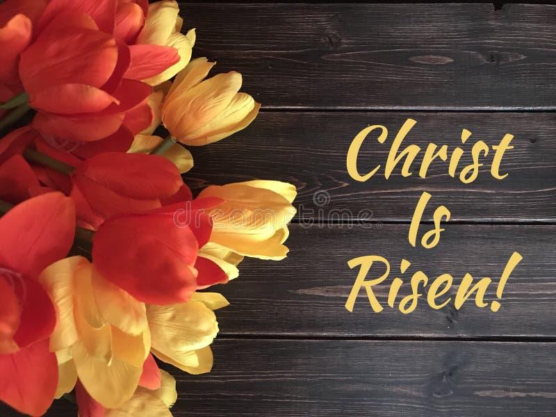 与红色和黄色郁金香的复活节标志 免版税库存照片