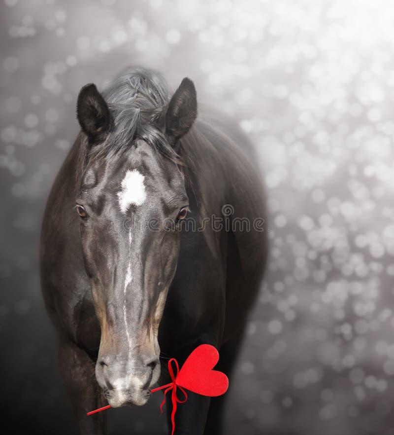 与红色心脏,华伦泰的马 图库摄影