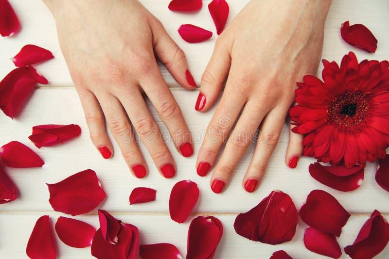 与红色指甲油和瓣的美丽的手指钉子 库存照片