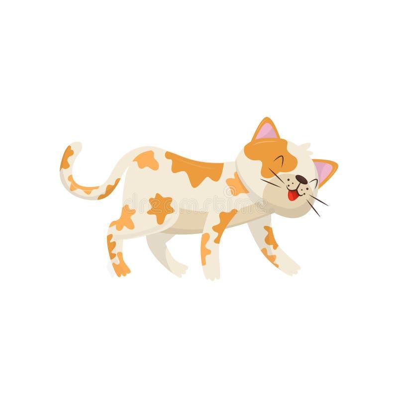 与红色斑点的滑稽的猫 微笑的小猫走和 儿童图书或海报或者宠物商店的平的传染媒介元素 库存例证