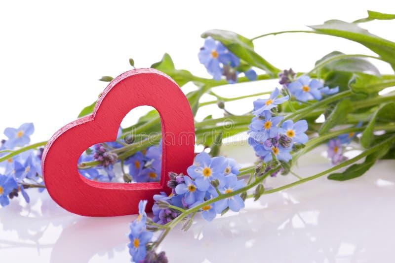 与红色木心脏的蓝色勿忘我草花 免版税库存照片
