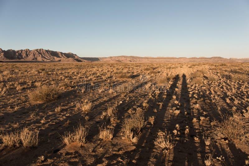 与红色沙丘在日落,两人,Sossusvlei,纳米布Naukluft国立公园,纳米比亚的阴影的美好的风景 库存图片