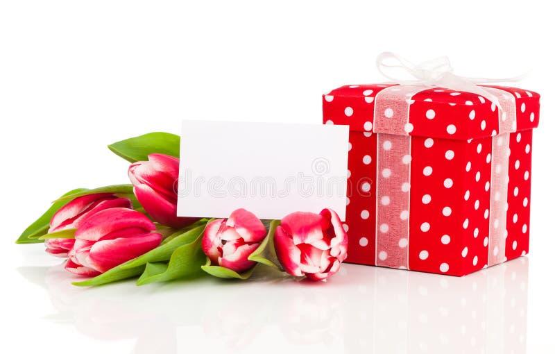 与红色短上衣小点礼物盒的美丽的郁金香。愉快的母亲节, 库存图片