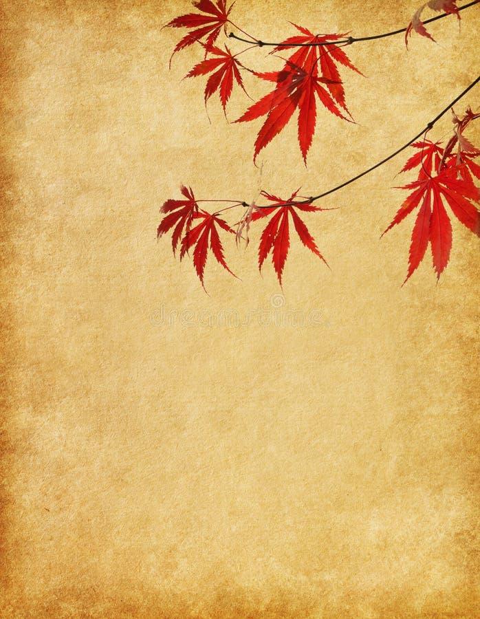 与红色秋叶分支的纸。 图库摄影