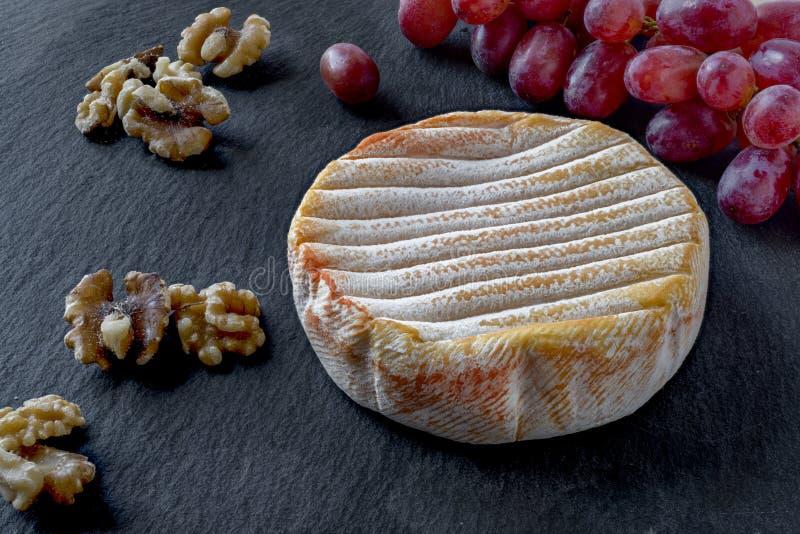 与红色细菌污迹的年迈的法国软干酪从孚日省山 免版税库存照片