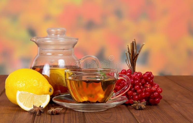 与红色荚莲属的植物和柠檬的茶在桌上 图库摄影