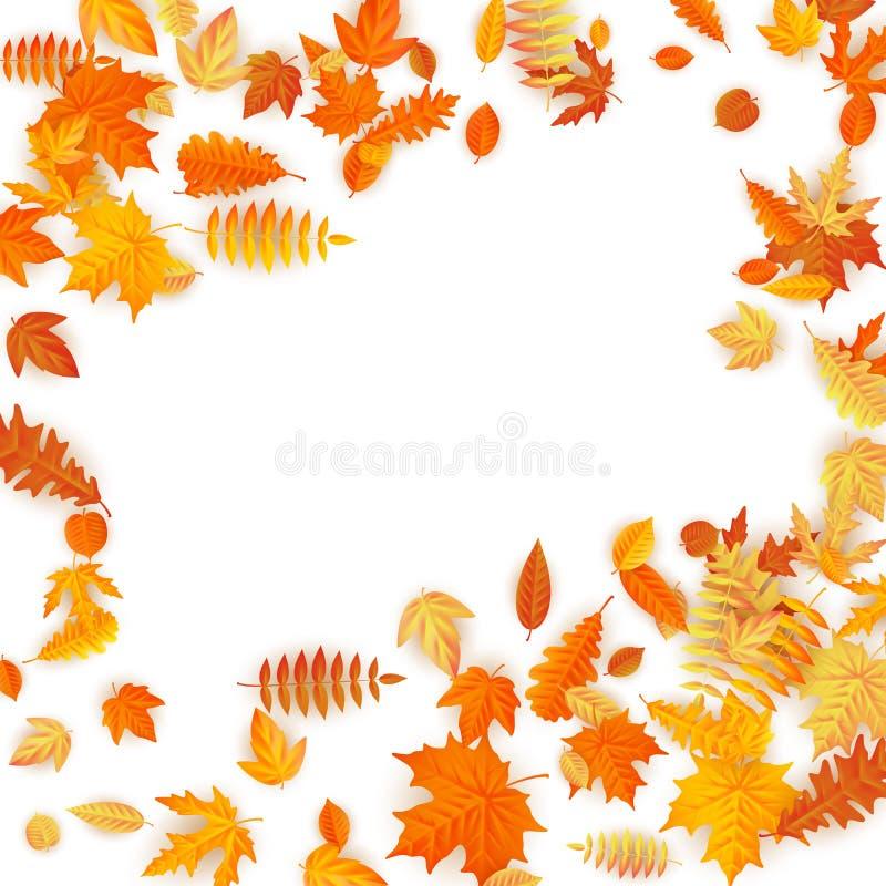 与红色,橙色,棕色和黄色落的秋叶的框架 10 eps 向量例证