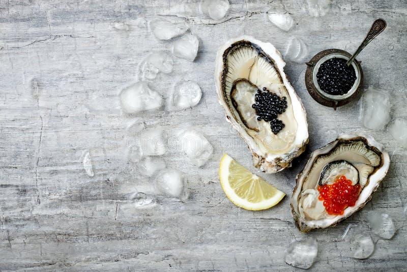 与红鲑鱼的被打开的牡蛎和黑鲟鱼鱼子酱和柠檬在冰在灰色具体背景 顶视图,平的位置 库存图片