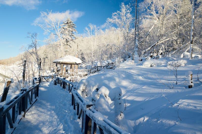 与纯净的白色雪的木支架在山 库存图片