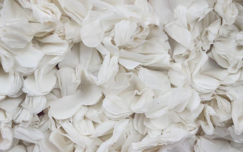 与纸花纹理的白色背景 免版税库存照片