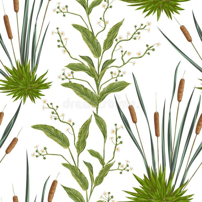 与纸莎草和沼泽植物的无缝的样式 库存例证