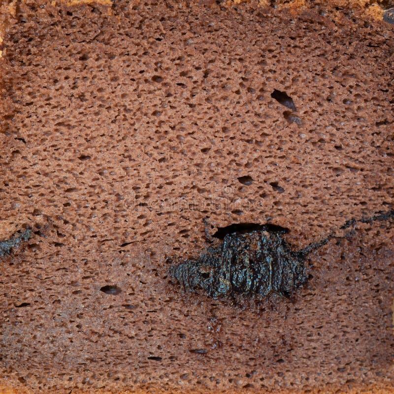 与纹理的巧克力松糕宏观射击 免版税库存图片