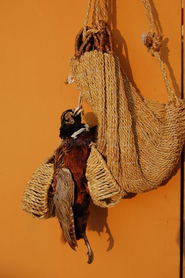 与结辨的鞋子和篮子一起的AStuffed鸟在韩国 免版税库存照片