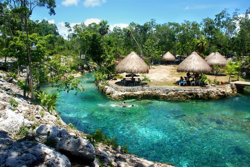 与绿松石水和豪华的植被的Cenote在Tulum,墨西哥附近,2015年 库存图片