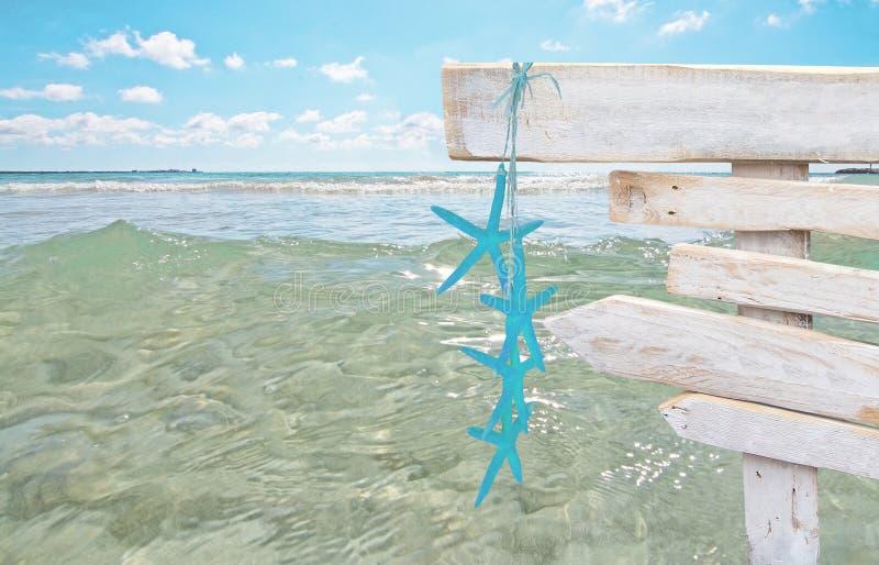 与绿松石海星的土气白色空的木标志在新鲜的绿色海洋浇灌 免版税库存图片