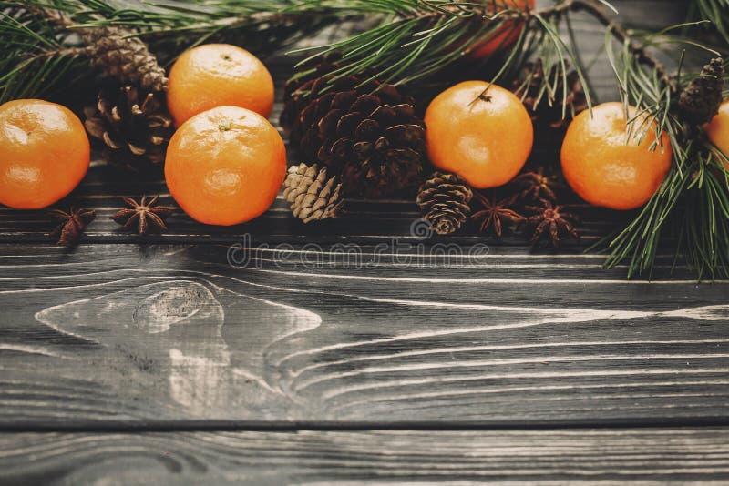 与绿色冷杉的蜜桔分支与锥体和茴香在rusti 免版税库存照片