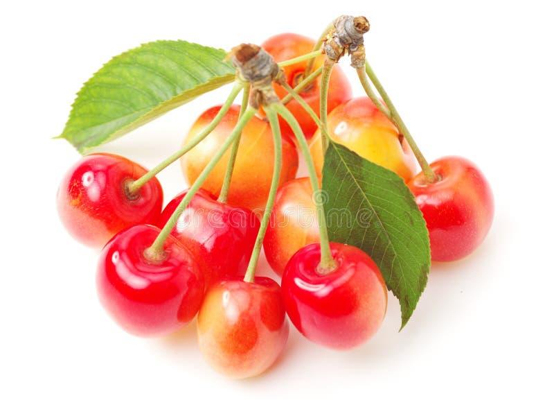 与绿色叶子的新鲜的红色和黄色樱桃 免版税图库摄影