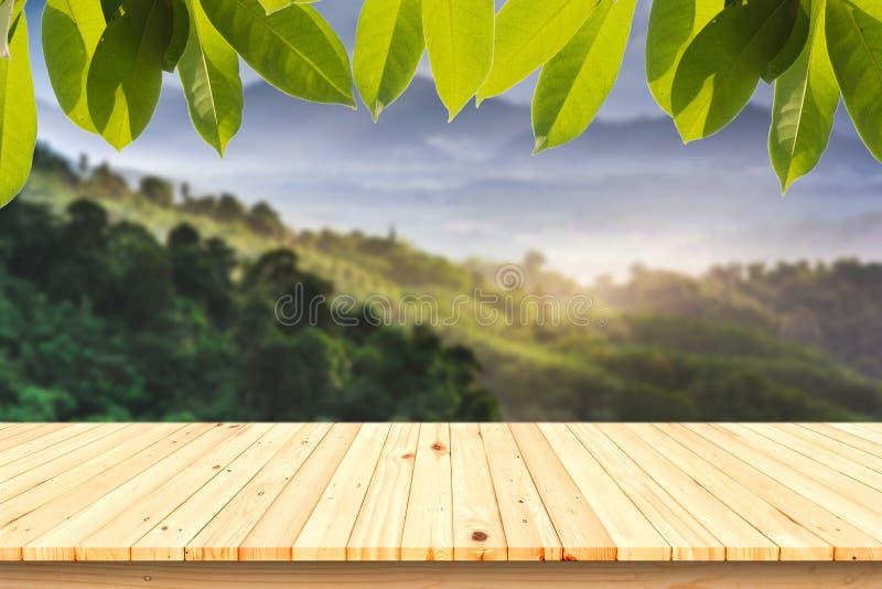 与绿色叶子的木被弄脏的背景的桌和森林 免版税库存照片