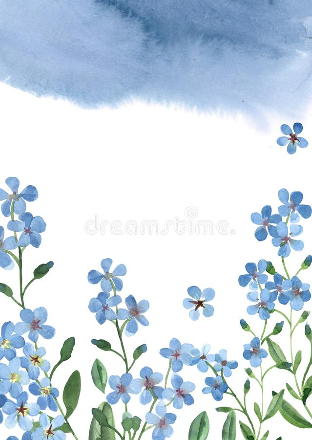 与绿色叶子的水彩蓝色勿忘草在与油漆飞溅的白色背景贺卡的 向量例证