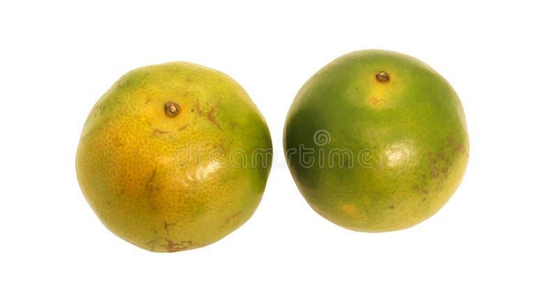 与绿色叶子的绿色两泰国橙色果子 免版税库存照片