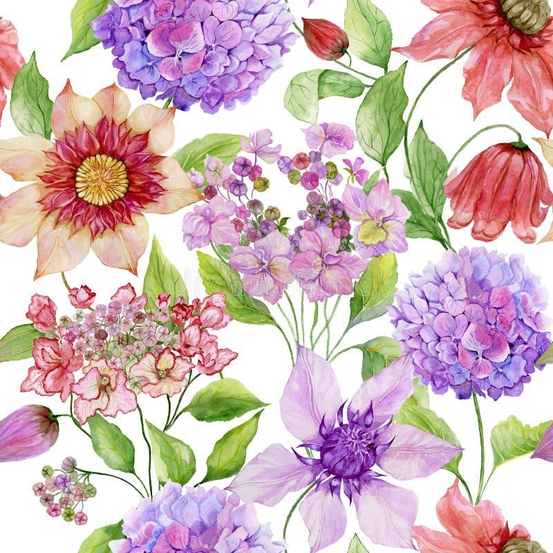 与绿色叶子的美丽的铁线莲属和八仙花属花反对白色背景 无缝花卉的模式 多孔黏土更正高绘画photoshop非常质量扫描水彩 皇族释放例证